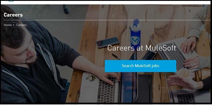 MuleSoft Job Application