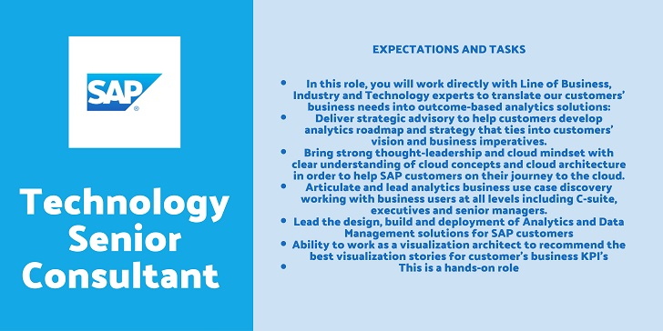 SAP  Technology Senior Consultant