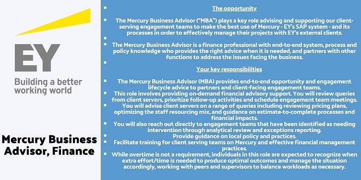 EY Mercury Business Advisor, Finance